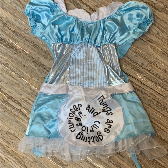 Disney Other - Alice in Wonderland Halloweeen Costume
